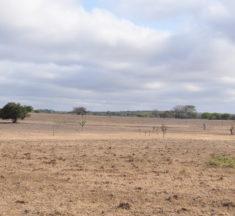 REUNIÃO DA DEN – Deliberações sobre o terreno no Park Way